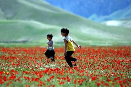 په افغانستان کې نوروز