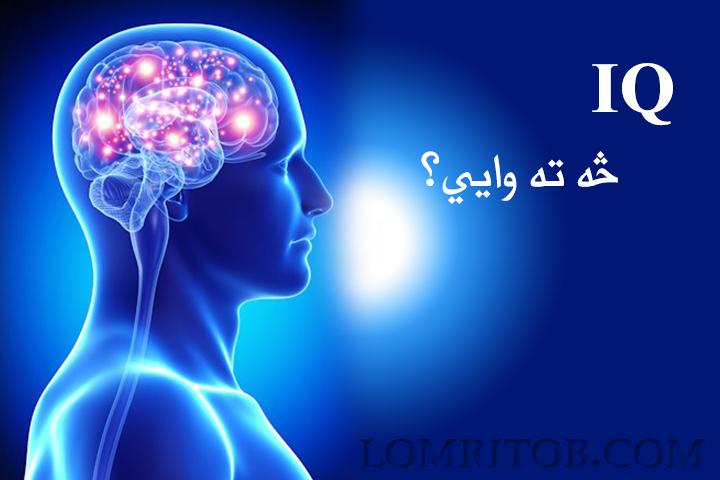 IQ یا هوښیارۍ ضریب څه شئ دی